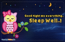 Good Night My Everything Sleep Well