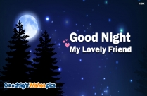 Good Night My Lovely Friend