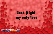 Good Night My Only Love