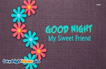 Good Night My Special Friend