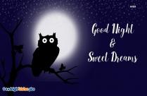 Good Night Cute Owl