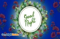 Good Night Photos Download