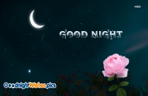 Good Night Flower Images