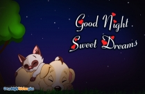 Good Night Wishes for Papa And Mama
