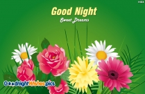 Good Night Wishes Flowers