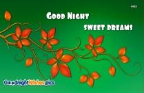 Good Night Sweet Dreams Red Rose