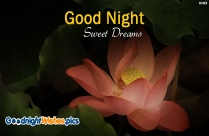 Good Night Sweet Dreams Hd Wallpaper