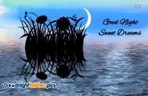 Good Night Sweet Dreams Spring