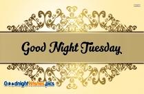 Good Night Tuesday