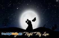 Good Night Romantic Love