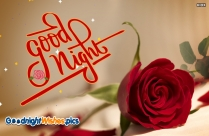 Good Night Wishes Rose