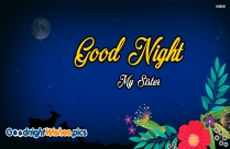 Good Night Wishes Sister