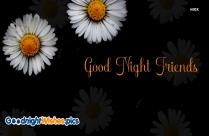Sweet Night Friends