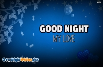 Good Night My Honey