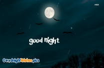 Good Night With Birds Images