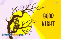 Good Night With Owl