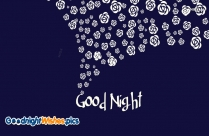 Good Night Sweety