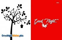 Good Night With Tree
