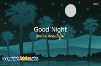 Good Night For Beautiful