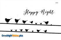 Happy Night Birds Images