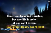 Never, Say Dreaming Is Useless, Because