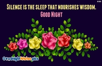 Silence Is The Sleep That Nourishes